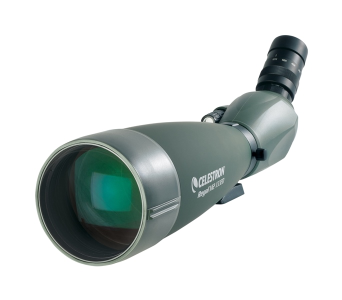 CELESTRON Spotting Scope Regal M2 22-67x100 45° (52306)